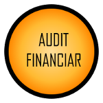 audit_financiar3
